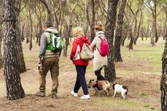 Tre persone sulle loro parti posteriori, facenti una passeggiata immagine stock