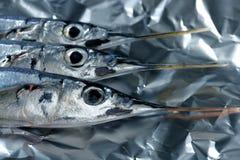 Tre pesci dell'ago, colpo a macroistruzione crudo dello studio Immagine Stock