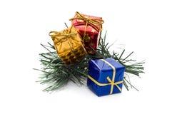 Tre piccoli contenitori di regalo sulla filiale del pino Fotografie Stock Libere da Diritti