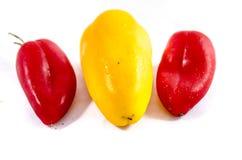 Tre piccoli peperoni dolci che mettono appena al sole Immagine Stock Libera da Diritti