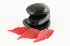 Tre pietre nere con i fogli rossi Fotografia Stock Libera da Diritti