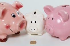 Tre piggybanks på tabellen med en myntcloseup Arkivfoto