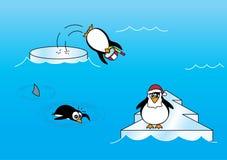 Tre pinguini su ghiaccio Immagine Stock Libera da Diritti