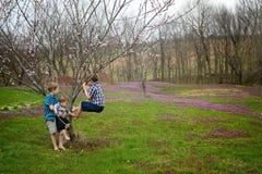 Tre pojkar som klättrar ett träd i våren Arkivfoto