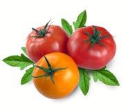 Tre pomodori con la foglia Immagini Stock Libere da Diritti