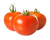 Tre pomodori isolati su bianco Fotografia Stock