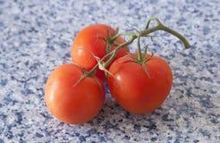 Tre pomodori rossi su un ramo fotografia stock