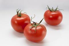 Tre pomodori rossi sul nero immagine stock