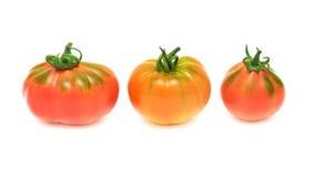 Tre pomodori su priorità bassa bianca Immagine Stock