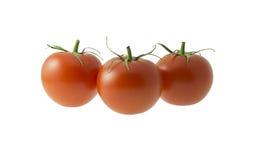 Tre pomodori su priorità bassa bianca Immagine Stock Libera da Diritti