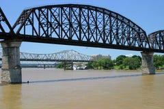 Tre ponticelli che misurano il fiume di Ohio Immagine Stock Libera da Diritti