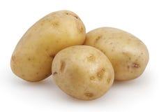 Tre potatisar som isoleras på vit Arkivfoto