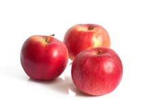 Tre röda äpplen Arkivfoto