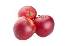 Tre röda äpplen royaltyfri bild