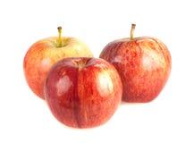 Tre röda mogna äpplen på en vit bakgrund Royaltyfria Bilder