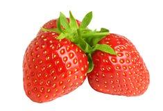 Tre röda nya jordgubbar stänger sig upp på vit bakgrund Royaltyfria Foton