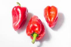 Tre röda peppar på en vit bakgrund Royaltyfria Foton