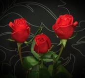 Tre röda rosor över svart backround Arkivfoton