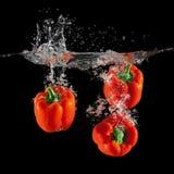 Tre röda spanska peppar som faller i vatten med färgstänk på svart bakgrund, paprika, stoppar rörelsefotografi arkivbild