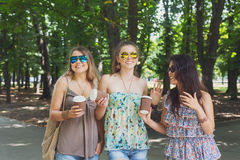 Tre ragazze alla moda eleganti di bello giovane boho che camminano nel parco Immagini Stock