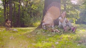 Tre ragazze che si siedono nel parco e che mangiano granato stock footage