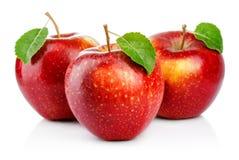 Tre röda äpplen med bladet som isoleras på en vit Arkivfoto