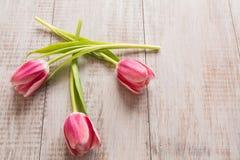 Tre rosa tulpan på Wood bakgrund Arkivfoton