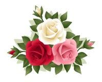 Tre rose di vari colori. Fotografia Stock Libera da Diritti