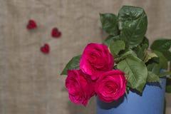 Tre rose rosse il giorno del ` s del biglietto di S. Valentino Fotografia Stock