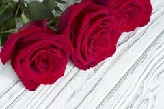 Tre rose rosse su fondo di legno bianco Fotografia Stock Libera da Diritti