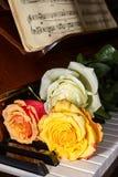 Tre rosor Royaltyfri Fotografi