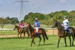 Tre ryttare på hästrygg Nöjemoment Royaltyfria Bilder