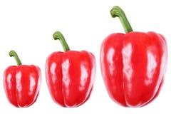 tre söta röda peppar som isoleras på vit Arkivbild