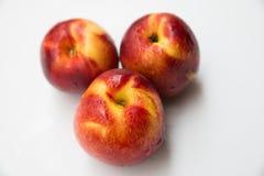 Tre saftiga persikor Royaltyfri Bild