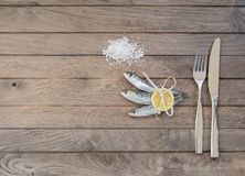 Tre sardine, sale e forcelle con il coltello Fotografie Stock Libere da Diritti