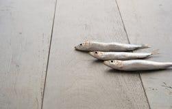 Tre sardine sulla tavola di legno Fotografia Stock