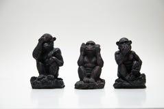 Tre scimmie Immagine Stock