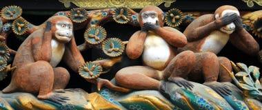 Tre scimmie Fotografia Stock Libera da Diritti