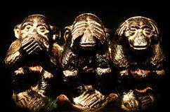 Tre scimmie Fotografie Stock Libere da Diritti