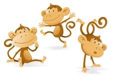 Tre scimmie molto insolenti Fotografia Stock