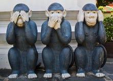 Tre scimmie saggie Immagine Stock