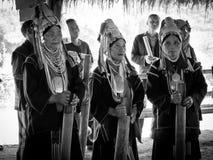 Tre signore della tribù di Padaung Immagine Stock Libera da Diritti
