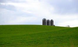 Tre silos del cereale in pascolo verde Immagini Stock