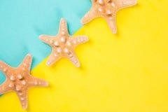 Tre sjöstjärnor på den kulöra mintkaramellen och gula bakgrunder med negationen Royaltyfri Foto
