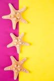 Tre sjöstjärnor på kulör guling och karmosinröda bakgrunder med Royaltyfri Bild