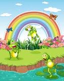 Tre skämtsamma grodor på dammet och en regnbåge i himlen Arkivbild