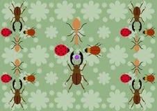 Tre skalbaggar och myran Arkivbild