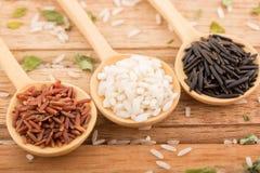 Tre sorter av ris i Wood skedar Arkivbild