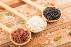 Tre sorter av ris i Wood skedar Arkivbilder