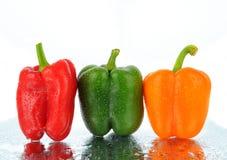 Tre spansk peppar Arkivfoton